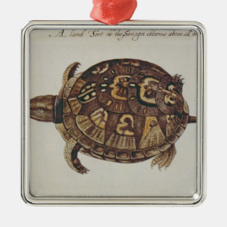 Common Box Tortoise Christmas Ornament