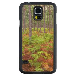 Common Bracken (Pteridium Aquilinum) Growing Carved Maple Galaxy S5 Case
