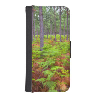 Common Bracken (Pteridium Aquilinum) Growing iPhone SE/5/5s Wallet Case