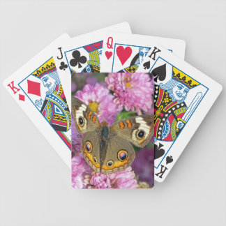 Common Buckeye Butterfly Bicycle Playing Cards