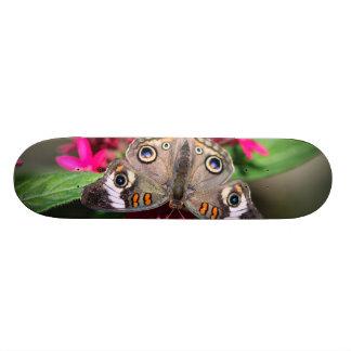 Common Buckeye Junonia Coenia 21.3 Cm Mini Skateboard Deck