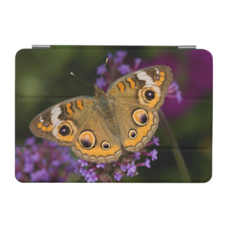 Common Buckeye on Brazilian Verbena iPad Mini Cover