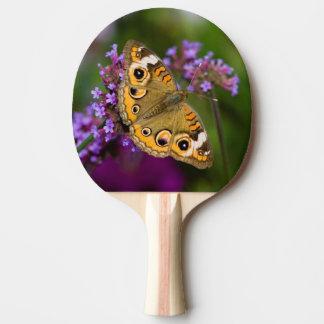 Common Buckeye Ping Pong Paddle