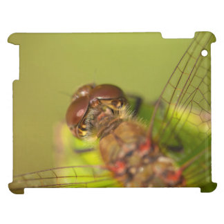 Common Darter Dragonfly Case For The iPad