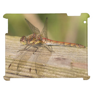 Common Darter Dragonfly Cover For The iPad 2 3 4