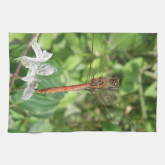 Common Darter Dragonfly Kitchen Towel