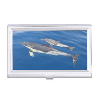 Common Dolphin Business Card Holder