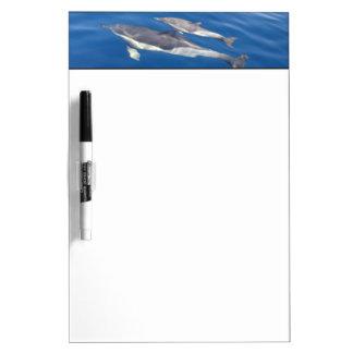 Common Dolphin Dry Erase Board