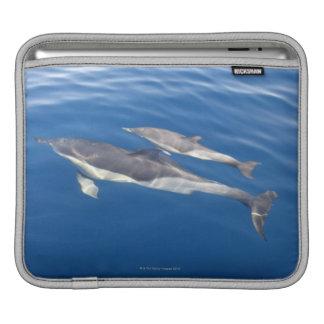 Common Dolphin in the strait iPad Sleeve