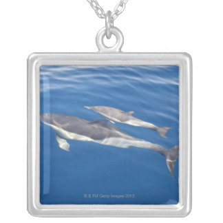 Common Dolphin in the strait Silver Plated Necklace