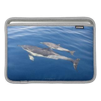 Common Dolphin MacBook Sleeve