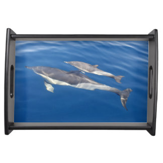 Common Dolphin Serving Tray