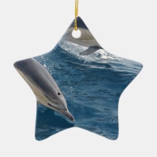 common-dolphins-914 ceramic star decoration