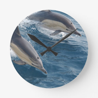 common-dolphins-914 clock