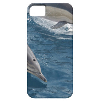 common-dolphins-914 iPhone 5 cases