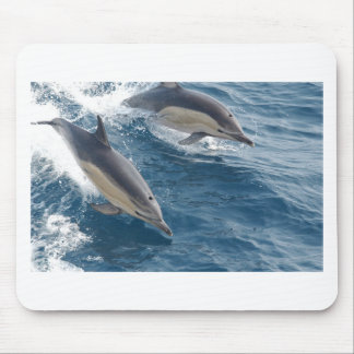 common-dolphins-914 mouse pad