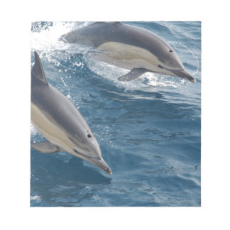 common-dolphins-914 notepads