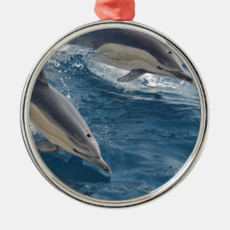 common-dolphins-914 Silver-Colored round decoration