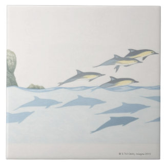 Common Dolphins Large Square Tile