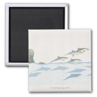 Common Dolphins Magnet