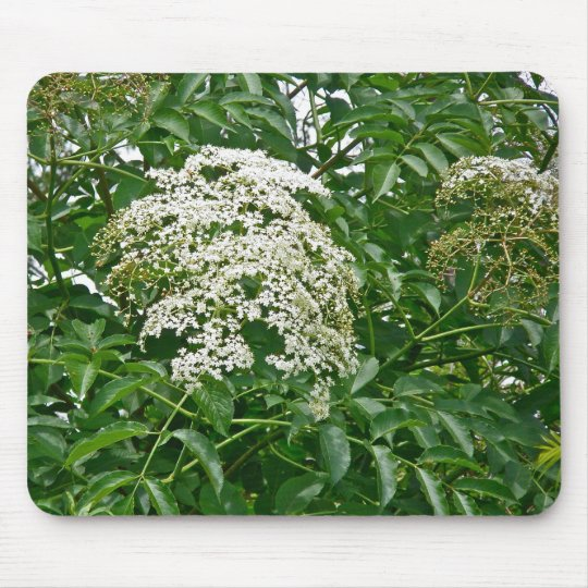 Common Elderberry Coordinating Items Mouse Mat