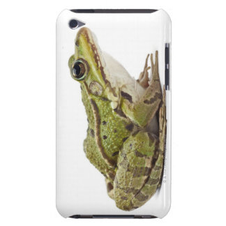 Common European frog or Edible Frog iPod Case-Mate Cases