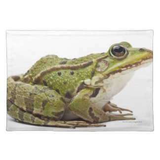 Common European frog or Edible Frog Placemats