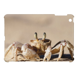Common Ghost Crab (Ocypode Cordimana) iPad Mini Cover