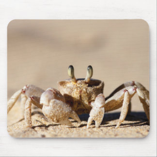 Common Ghost Crab (Ocypode Cordimana) Mouse Pad