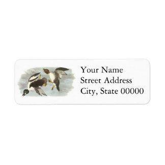 Common Goldeneye, John Audubon Return Address Label