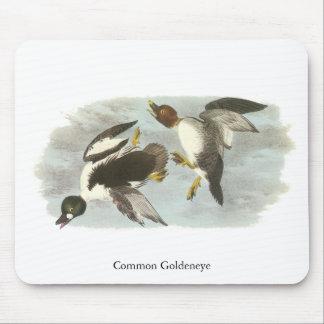 Common Goldeneye, John Audubon Mouse Pad