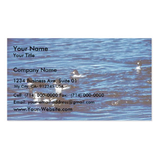 Common Goldeneye Pack Of Standard Business Cards