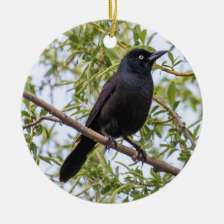 Common Grackle Christmas Ornament