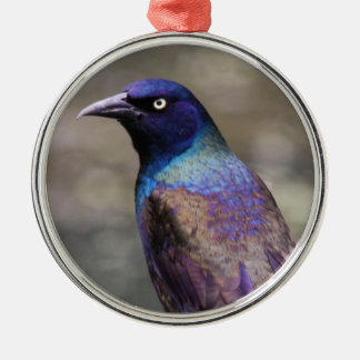 Common Grackle Silver-Colored Round Decoration