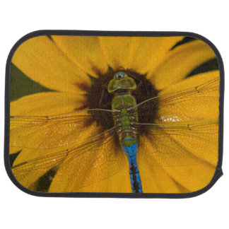 Common Green Darner male on Black-eyed Susan Car Mat