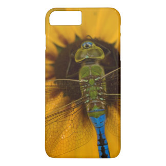 Common Green Darner male on Black-eyed Susan iPhone 8 Plus/7 Plus Case