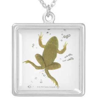 common green frog silver plated necklace