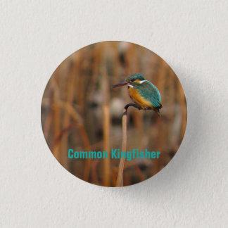 Common Kingfisher 3 Cm Round Badge