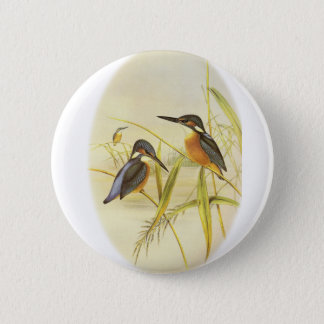 Common Kingfisher 6 Cm Round Badge