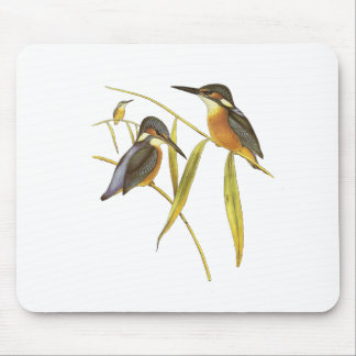Common kingfisher mouse pad