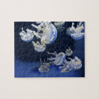 Common Lagoon Jelly Jigsaw Puzzle
