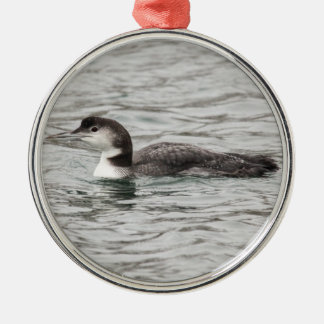 Common Loon Silver-Colored Round Decoration