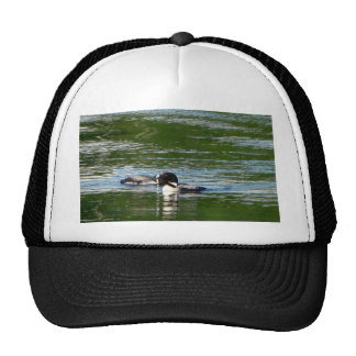 Common Loon Hats