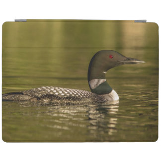 Common Loon Male On Beaver Lake Near Whitefish iPad Cover
