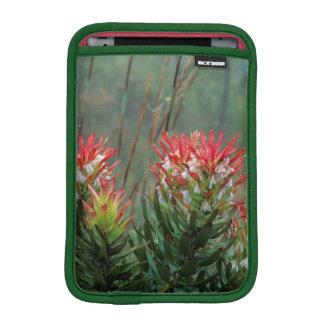 Common Mimetes (Mimetes Cucullatus) iPad Mini Sleeve