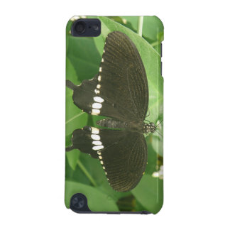 Common Mormon Butterfly iPod Case