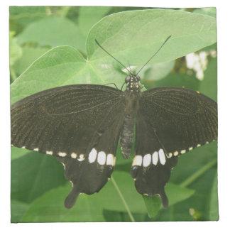 Common Mormon Butterfly Napkin