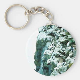 Common Murre Basic Round Button Key Ring