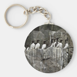 Common Murres, Castle Rock, Shumagin Islands Basic Round Button Key Ring