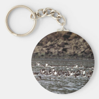 Common Murres on the Water Keychains